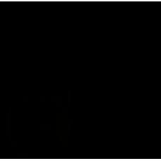 Набор встроенного монтажа с верхним душем FERRO Algeo Set